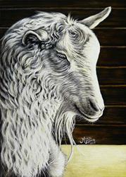 Art: Goat (SOLD) by Artist Monique Morin Matson