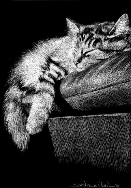 Art: Cat Nap by Artist Sandra Willard