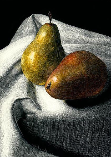 Art: Pair of Pears by Artist Sandra Willard