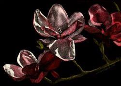 Art: Branch of Blossoms by Artist Sandra Willard