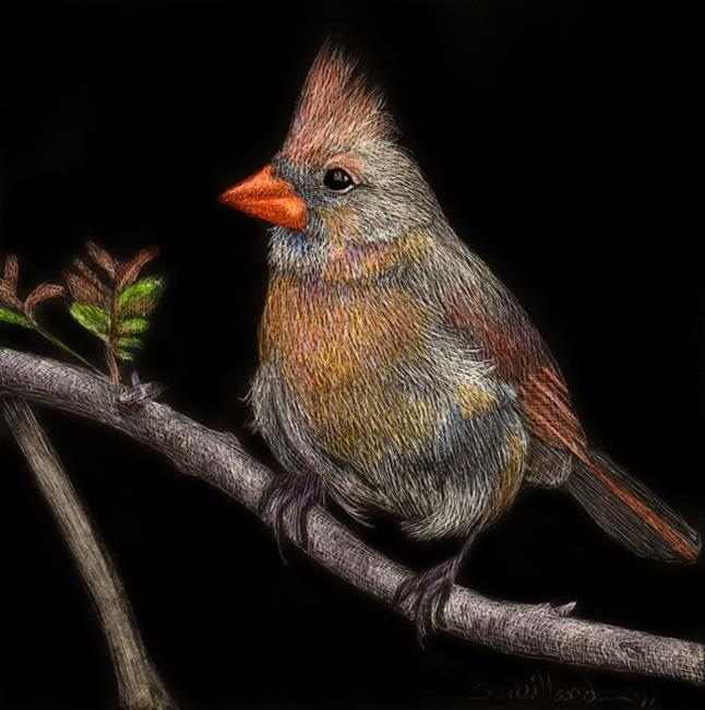 Art: Cardinal by Artist Sandra Willard