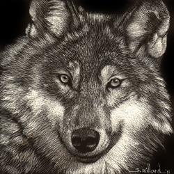 Art: Wolf by Artist Sandra Willard