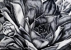 Art: Succulent by Artist Monique Morin Matson