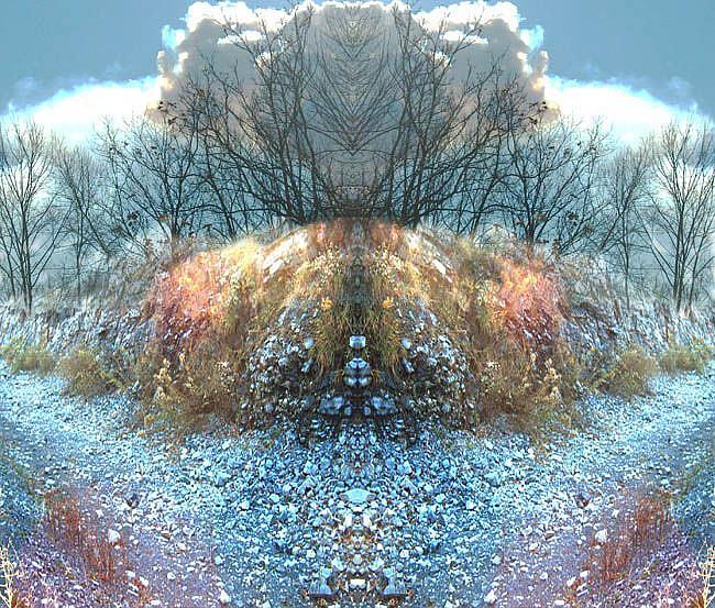 Art: Avarice by Artist Carolyn Schiffhouer