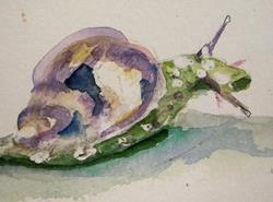 Art: Purple Snail by Artist Delilah Smith