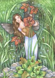 Art: Pitcher Plant Fairy by Artist Carmen Medlin