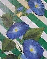 Art: Blue Morning Glories//SOLD by Artist Barbara Haviland