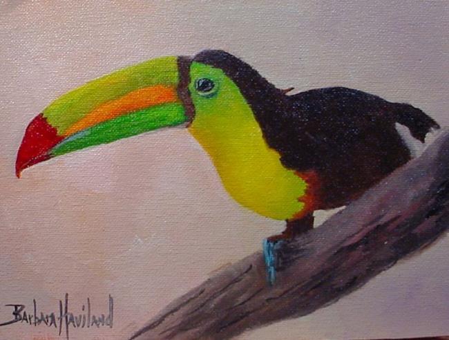 Art: Toucan  Bird  / SOLD by Artist Barbara Haviland