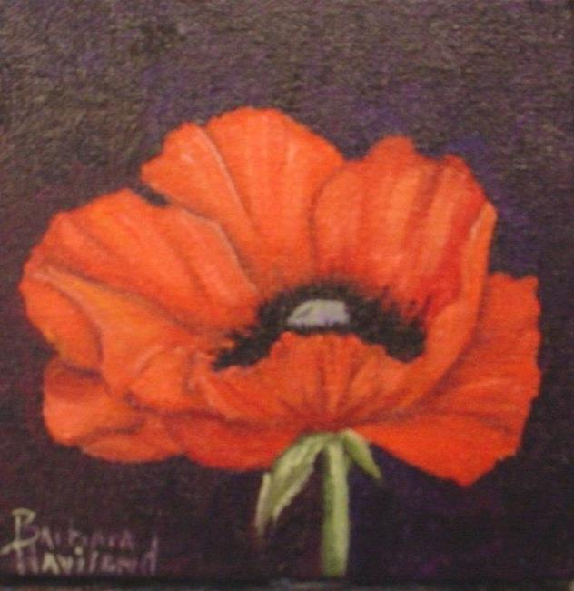 Art: mini Red Poppy  sold by Artist Barbara Haviland