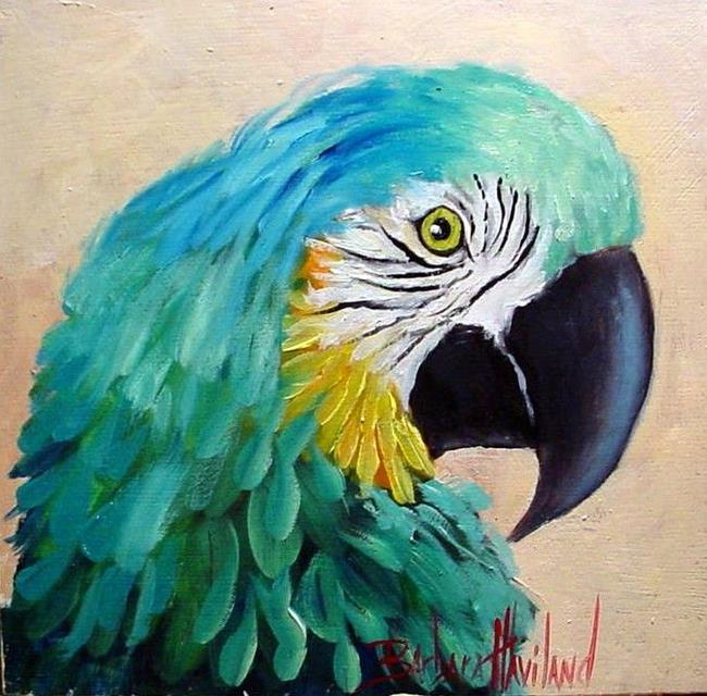 Art: Miniature Macaw Parrot //Sold by Artist Barbara Haviland