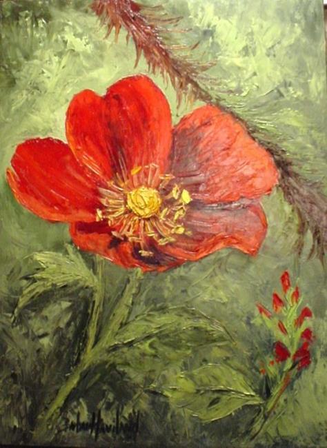 Art: Wild Rose for Hubby //SOLD by Artist Barbara Haviland