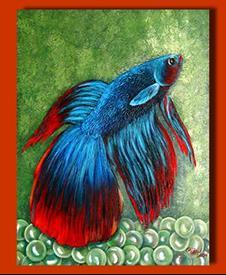 [Image: SiameseFightingFish_275_275.jpg]