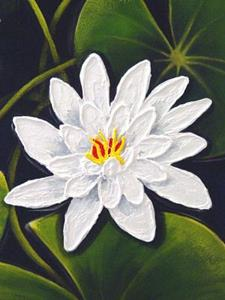 Detail Image for art <b>White Water Lilies