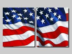 Art: Freedom Flag #2 by Artist Rita C. Ford