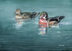 Art: Wood Ducks by Artist Steve Hamlin