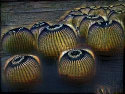 Art: Cacto-Lanterns by Artist Deanne Flouton