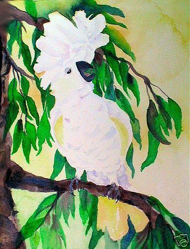 Art: I'm So Pretty - Umbrella Cockatoo by Artist Susie Barstow