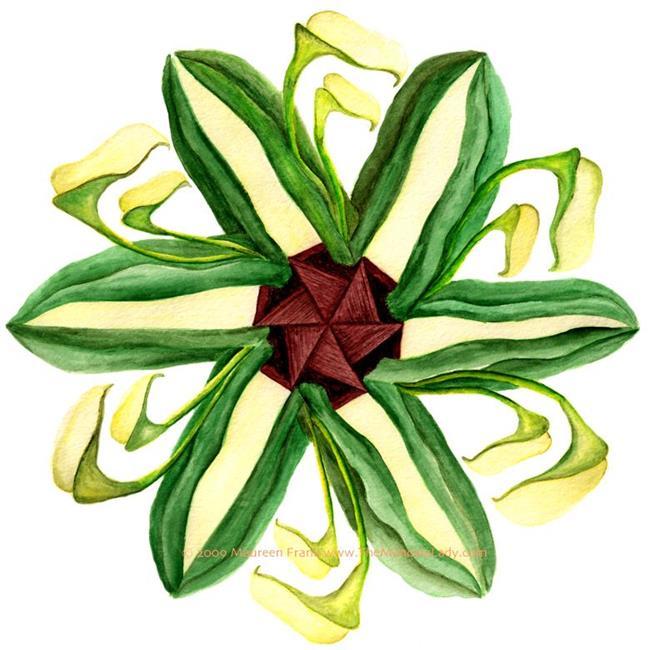 Art: Calla Lilies by Artist Maureen Frank