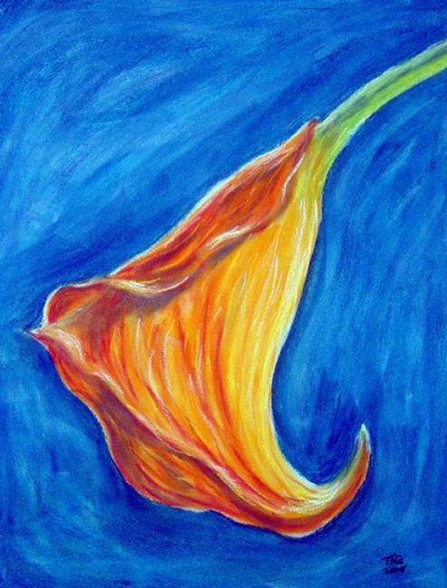 Art: Calla Lily #1 by Artist Tracey Allyn Greene