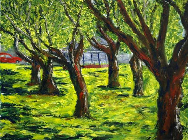 Art: Trees - Big Spring Park by Artist Tracey Allyn Greene