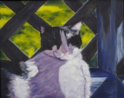 Art: Little Jack's Sun Nap by Artist Tracey Allyn Greene