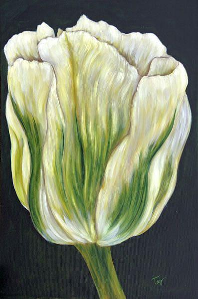 Art: Tulip in Green by Artist Tracey Allyn Greene