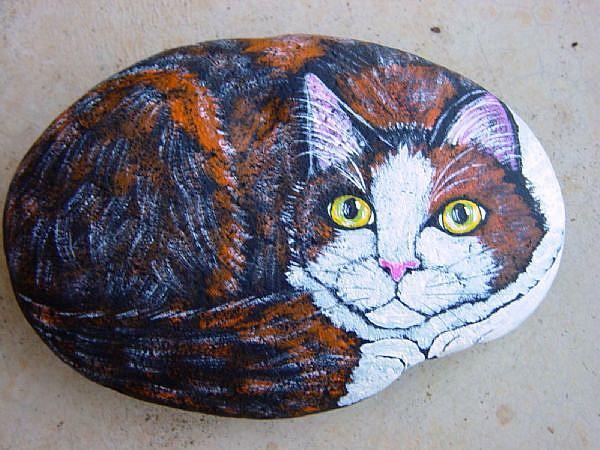 Art: tortiwhite by Artist Tracey Allyn Greene