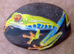 Art: Red-eyed Tree Frog - Rip of Amanda Makepeace by Artist Tracey Allyn Greene