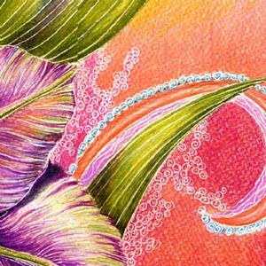 Detail Image for art Paisley Amaryllis