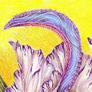 Detail Image for art Paisley Iris