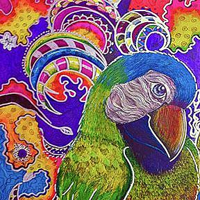 Detail Image for art Sharpie: the MaCaw