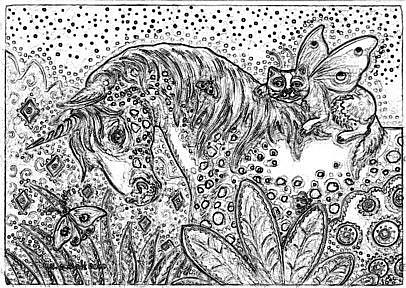 Art: APPALOOSA UNICORN - Stamp by Artist Susan Brack