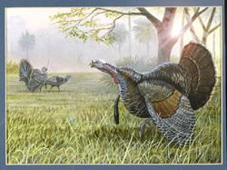 Art: turkeys by Artist Brian Vavra