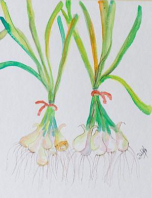 Art: Two Bunches of Green Onions by Artist Delilah Smith
