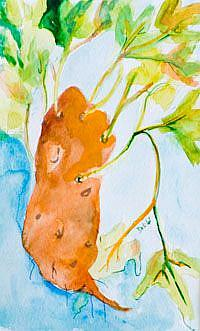 Art: Sweetpotatoe by Artist Delilah Smith