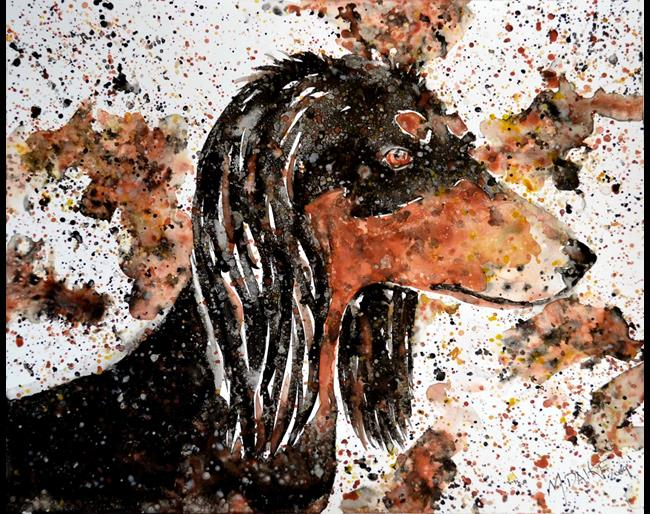 Art: Saluki in Colors 1 by Artist Melinda Dalke