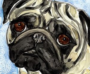 Detail Image for art Pansy Pug