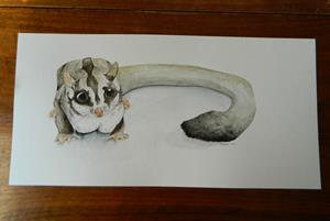 Detail Image for art Sugar Glider