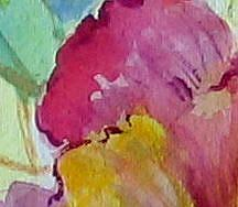 Detail Image for art Peony Blossom