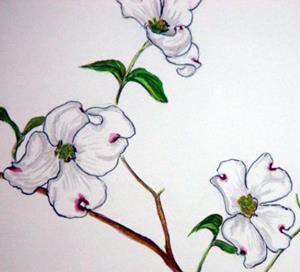 Detail Image for art Cornus florida