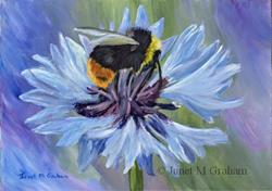 Art: Bee by Artist Janet M Graham