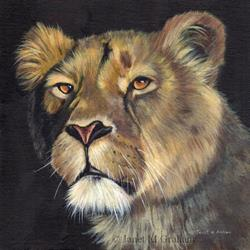 Art: Lioness 2 by Artist Janet M Graham