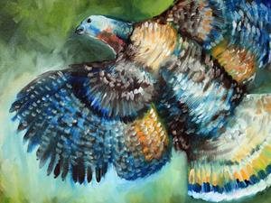 Detail Image for art WILD TURKEY IN FLIGHT