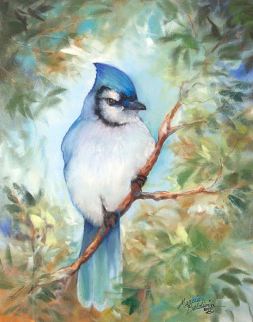 Art: BLUE JAY PASTEL by Artist Marcia Baldwin