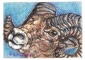 Art: Bighorn Sheep/Ram SOLD by Artist Kim Loberg