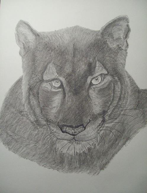 Art: Lioness by Artist Art by D.Sharelle