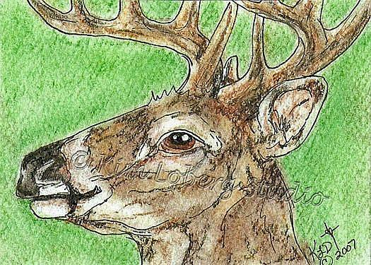 Art: Sneaky Deer SOLD by Artist Kim Loberg