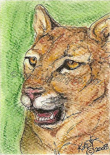 Art: Cougar SOLD by Artist Kim Loberg