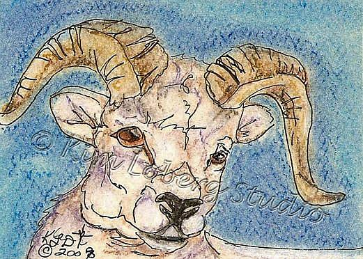 Art: Dall Sheep SOLD by Artist Kim Loberg