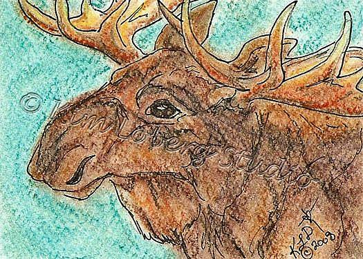 Art: Bull Moose SOLD by Artist Kim Loberg